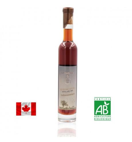 Cidra de gelo Saragnat 375 ml