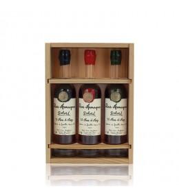 Bas Armagnac Delord coffret 3 bouteilles de 20 cl