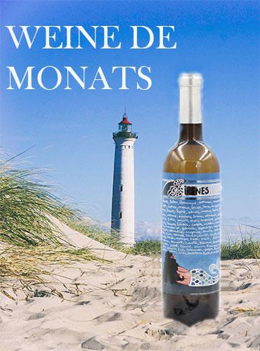 """Wein des Monats, mineralischer und aromatischer Wein, """"Meerjungfrauen von Cadaquès"""" für Knoblauch-Rasierschale oder einen Teller mit Muscheln"""