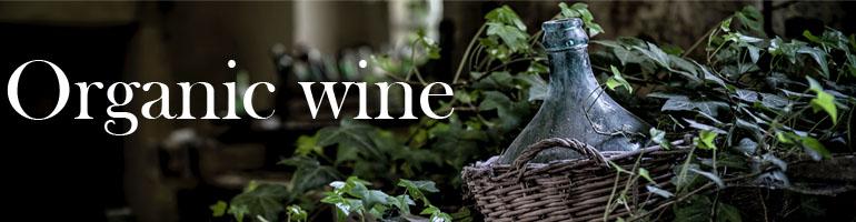 Organic wines le nez dans le verre