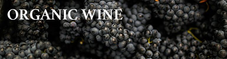 Organic wine le nez dans le verre