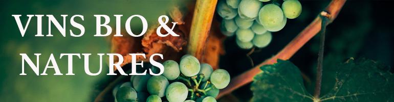 Vins biologiques et natures agriculture respectueuse de l'environnement le nez dans le verre