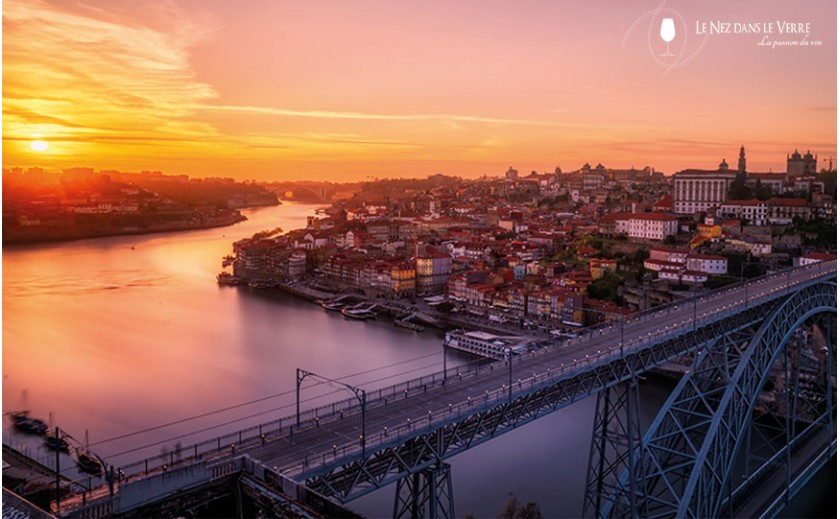 Porto, discovering the Douro Valley